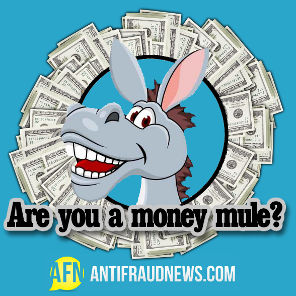 Are you s money mule